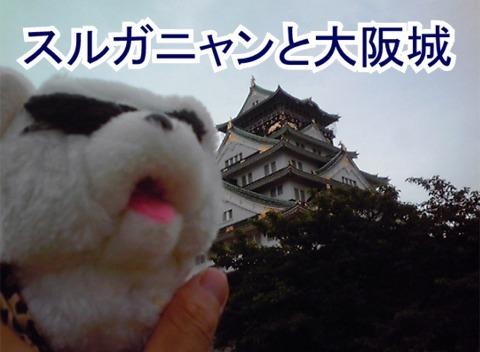 スルガニャンと大阪城.jpg